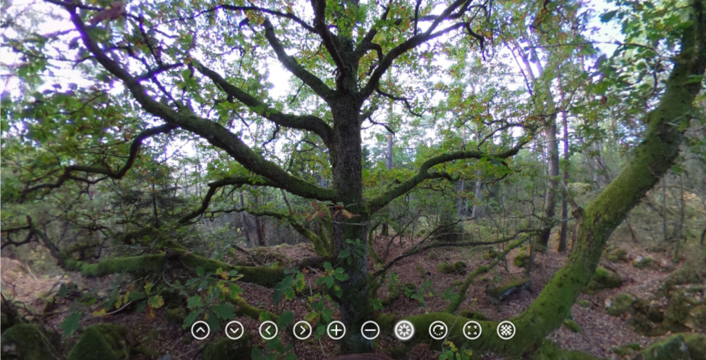 twot_360_front_start