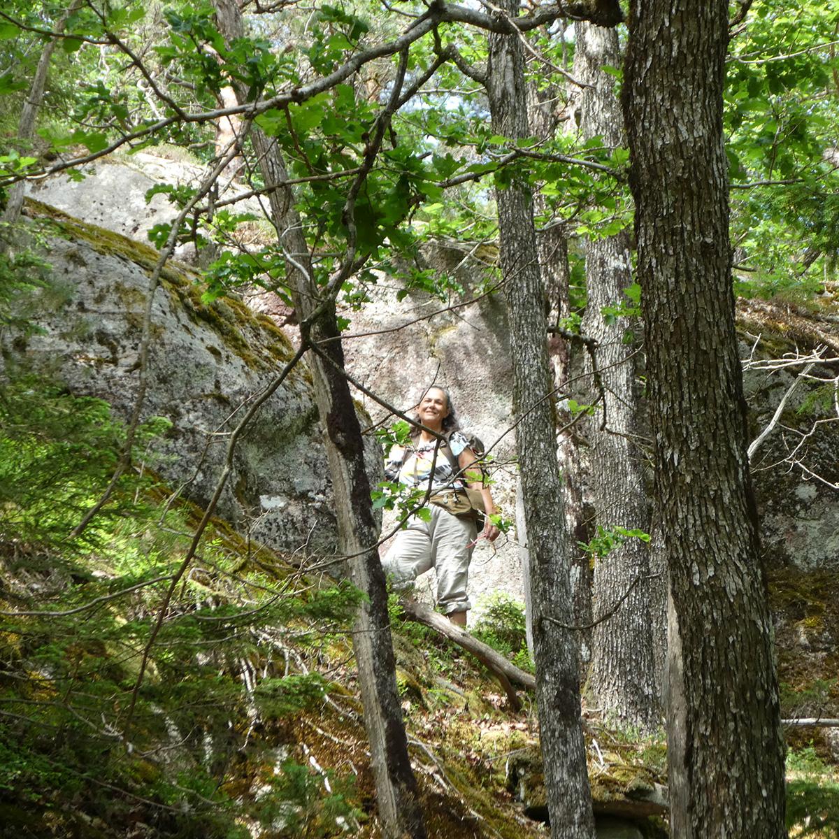 Rekreation i gammelskog ger goda hälsoeffekter