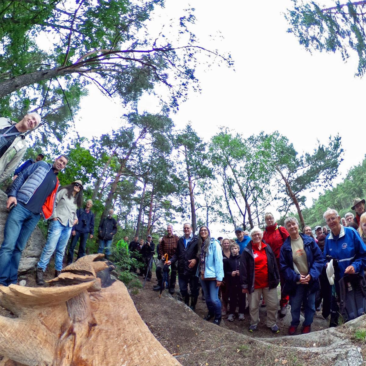 Tillsammans skyddar vi Sveriges sista gammelskogar