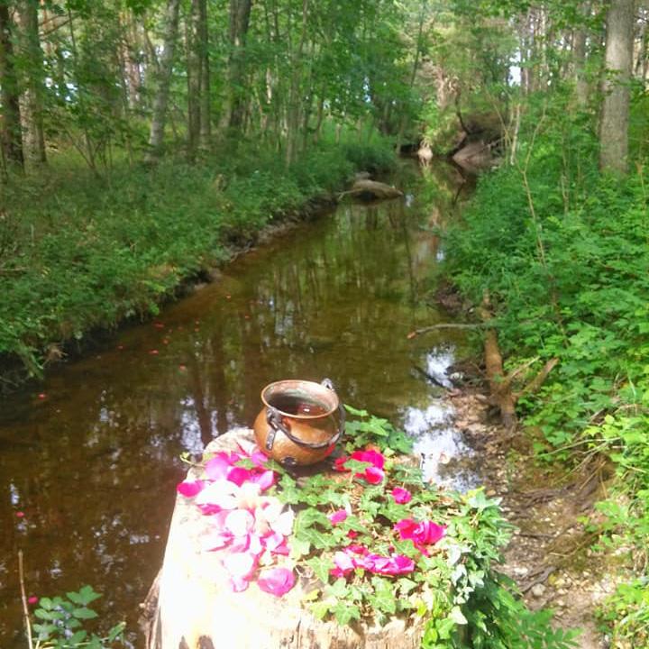 Magiska Familjen Gotland